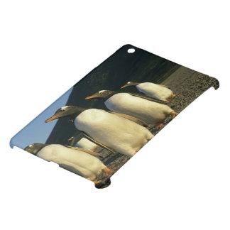 Gentoo Penguins, Pygoscelis papua), sunset, iPad Mini Cases