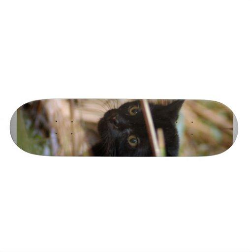Geoffroy Cat 014 Skateboard