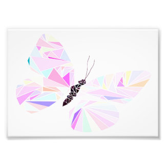 Geometric butterfly photograph