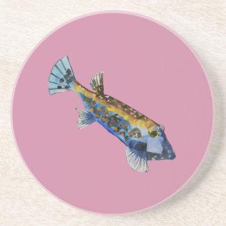 Geometric Fish Coaster