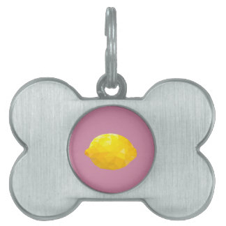 Geometric Fruit Pet ID Tag