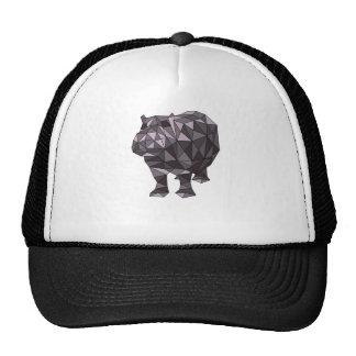 Geometric Hippo Cap