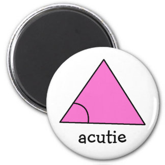 Geometry Math Teacher Gift Triangle Acute Acutie Magnet