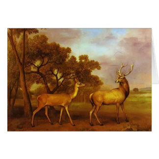 George Stubbs- Red Deer Stag and Hind Card