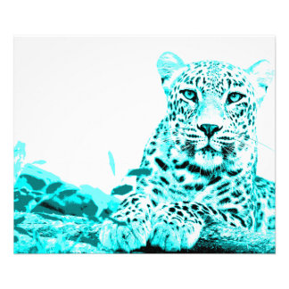 Georgeous Turquoise Leopard Photograph
