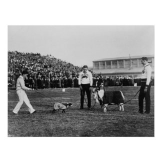Georgetown Navy Game, G. W. Bulldog and Navy Goat Poster