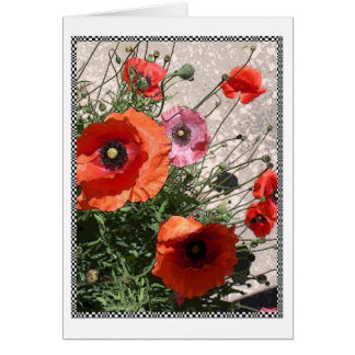 Georgetown Poppies I Card