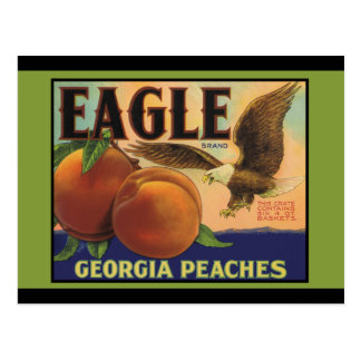 Georgia Eagle Peaches Postcard