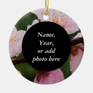 Georgia Peach Tree Blossoms Floral Photo 0534 Round Ceramic Decoration