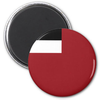 Georgian flag magnet