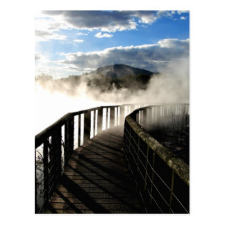 Geothermal Activity at Kuirau Park, New Zealand Postcard