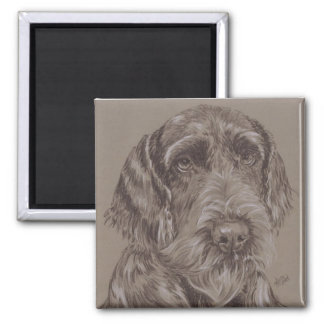 Ger. Wire-Haired Pointer Magnet
