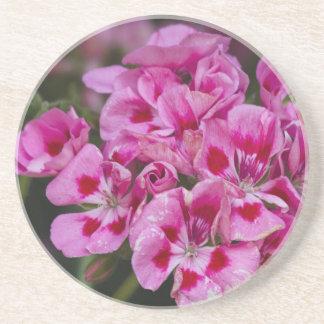 geranium coaster