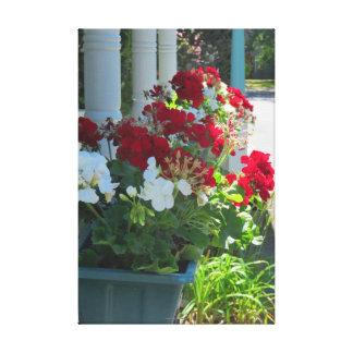 Geranium Flower Box - Martha's Vineyard Cottage Canvas Print