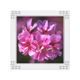 Geranium Pink Wall Art by bubbleblue Stretched Canvas Print