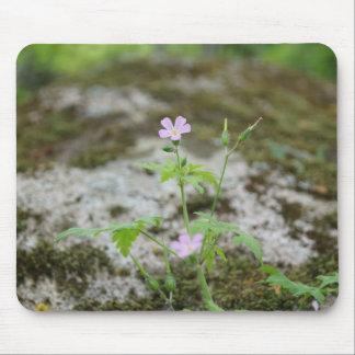 Geranium Robertianum Flowers Mouse pad