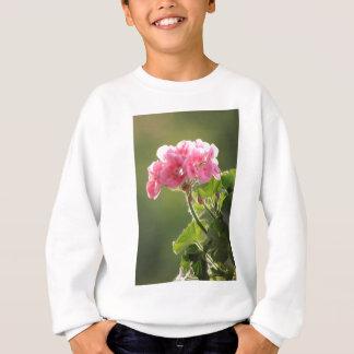 geranium sweatshirt