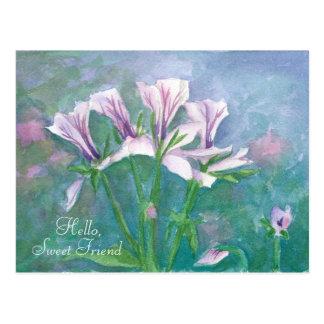 Geranium Watercolor Flowers Hello Sweet Friend Postcard