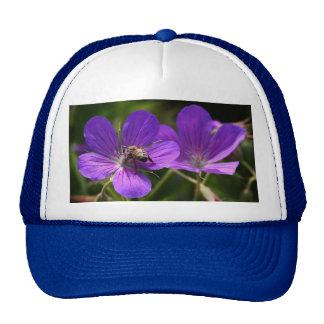 Geranium with Bee Cap
