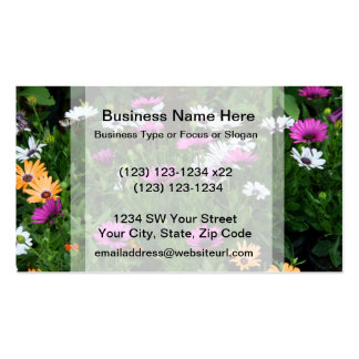 gerber daisies field multi colored flower business card template