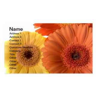 Gerber Daisy Business Cards