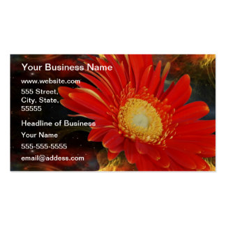 Gerber Daisy Pack Of Standard Business Cards