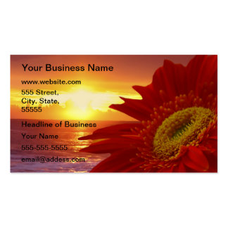 Gerber Daisy Pack Of Standard Business Cards