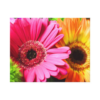 GERBER DAISY WRAPPED CANVAS STRETCHED CANVAS PRINTS