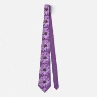 Gerbera Asteraceae - Tie