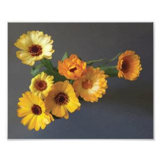 Gerbera bouquet paint photographic print