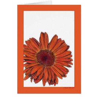 Gerbera Card