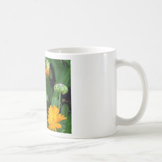 Gerbera Daisies - a Spalsh of Sunshine Basic White Mug