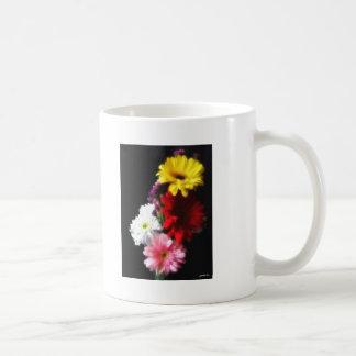 Gerbera Daisy 3 Mugs
