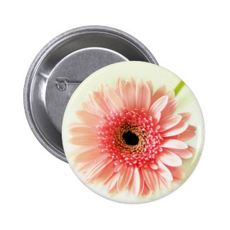 Gerbera Daisy 6 Cm Round Badge
