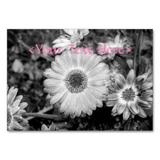 Gerbera Daisy Black & White Photograph Card