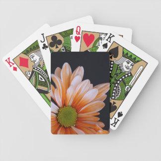 Gerbera daisy card deck