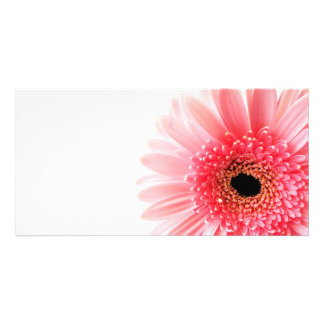 Gerbera Daisy Customised Photo Card