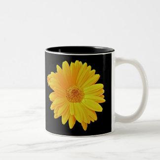Gerbera Daisy (Gerbera hybrida) - Yellow Mugs