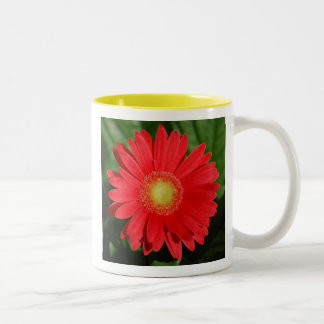 Gerbera Daisy Mother's Day Mug