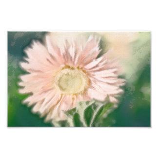 Gerbera Daisy Pastel Photo Art
