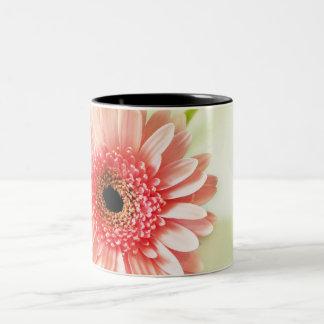 Gerbera Daisy Two-Tone Mug