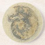 German Ammonite with Dendrites Drink Coasters