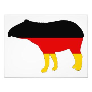 German Flag - Tapir Photograph