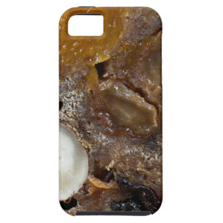 German fruit bread case for the iPhone 5