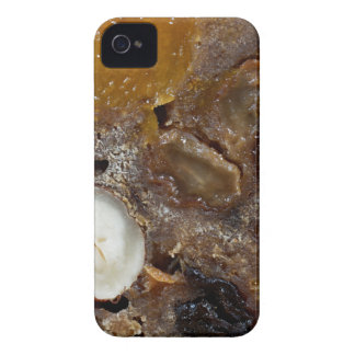 German fruit bread iPhone 4 case