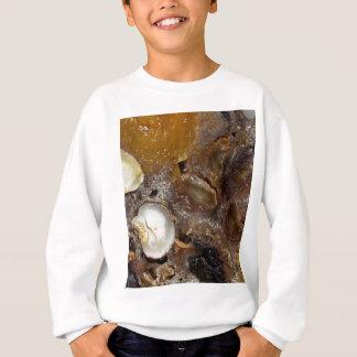 German fruit bread sweatshirt