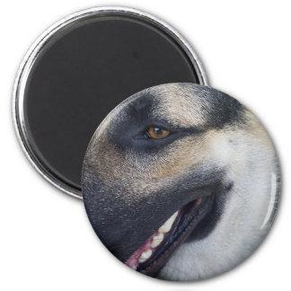 German Shepherd Adult T-Shirt 6 Cm Round Magnet