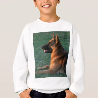 "German Shepherd at sunset - ""Zamp"" Sweatshirt"
