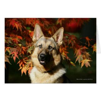 German Shepherd Autumn Leaves Card
