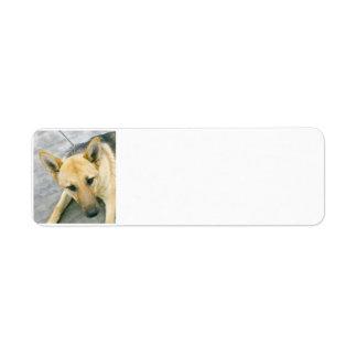 german-shepherd-black and cream return address label